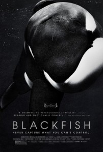 blackfish-1
