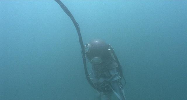 divingbell080