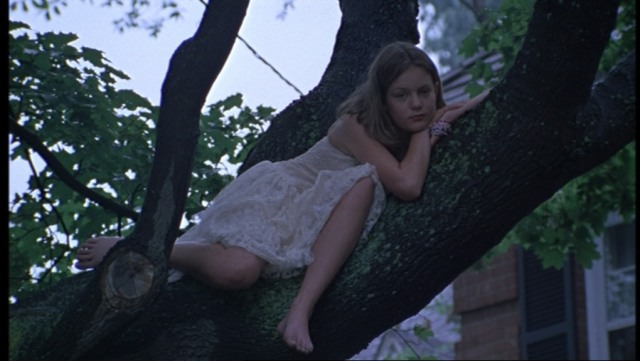 The-Virgin-Suicides-309