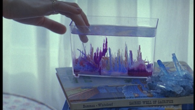 The-Virgin-Suicides-799
